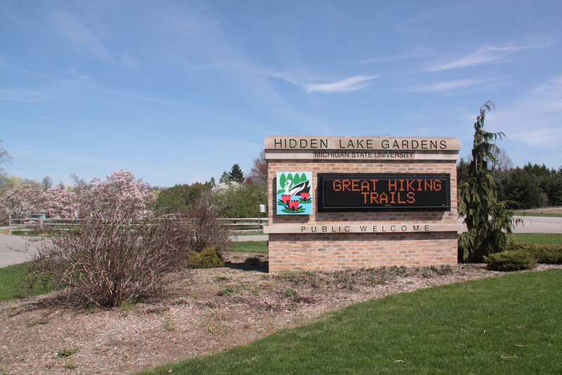 I am so ready for a beautiful day of spring flowers. Hidden Lake Gardens,  Tipton, MI, May 5, 2013