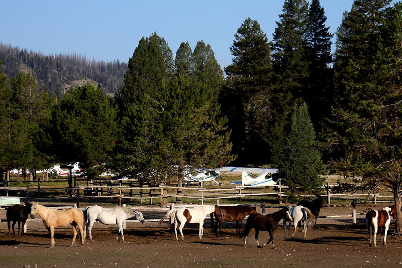Planes and Ponies, the two chief ways to get to Sulphur Creek Ranch