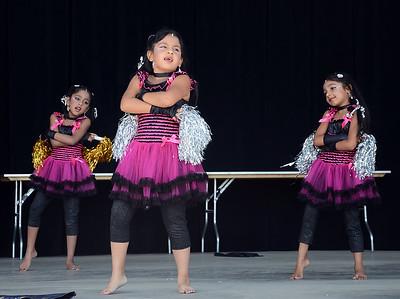 Indo American Festival