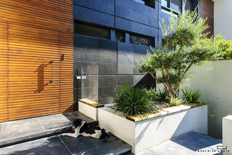 צילום אדריכלות: בית בשוהם. אדריכלות: ישראלביץ אדריכלים