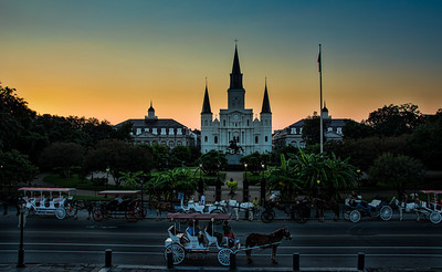 jackson-square-horse-carriages-1