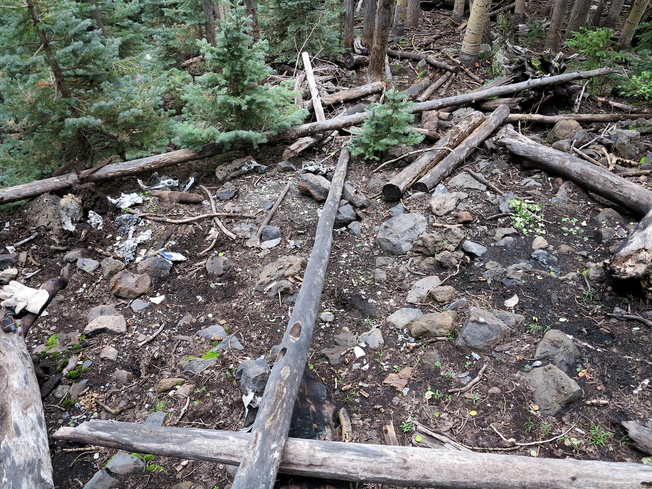 The entire crash site lies within a 20 foot radius. The short condensed debris path is consistent with a vertical descent to the ground.