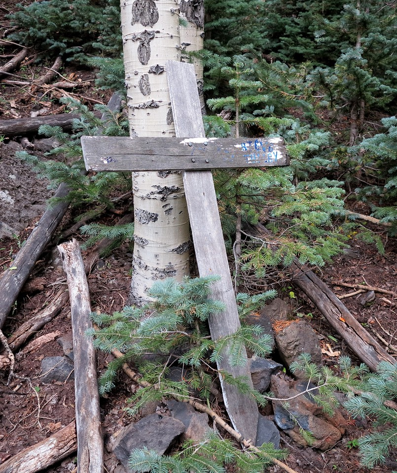 This memorial cross was located near the crash site. It was weathered from years of exposure to wind, rain, and snow. <br /> <br /> The cross was most likely placed at the site shortly after the accident by family and friends of the victims.