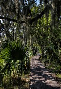 bayou-walkway-2