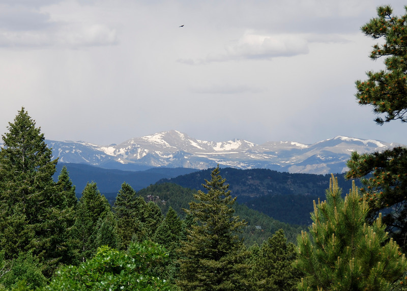 Mt Evans from near the top of Manor House Trail.