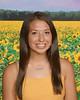 338 sunflowers