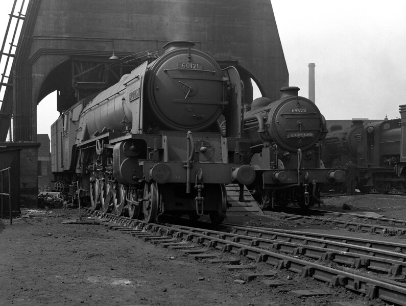 Peppercorn A1 Pacific 60121 Silurian and N2/2 69528 at the coaling plant at King's Cross MPD during the Railway Photographic Society visit in 1954.