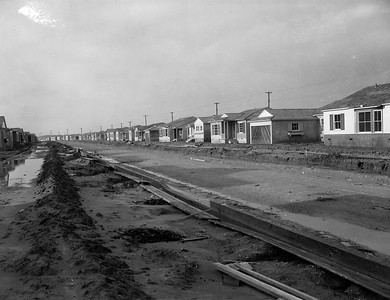Row of new houses, 1950