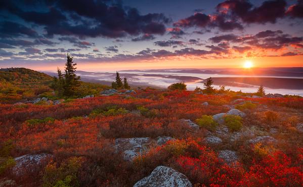 Sods Sunrise Splendor