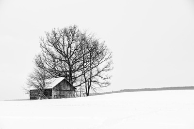 SAP_Snow_barn