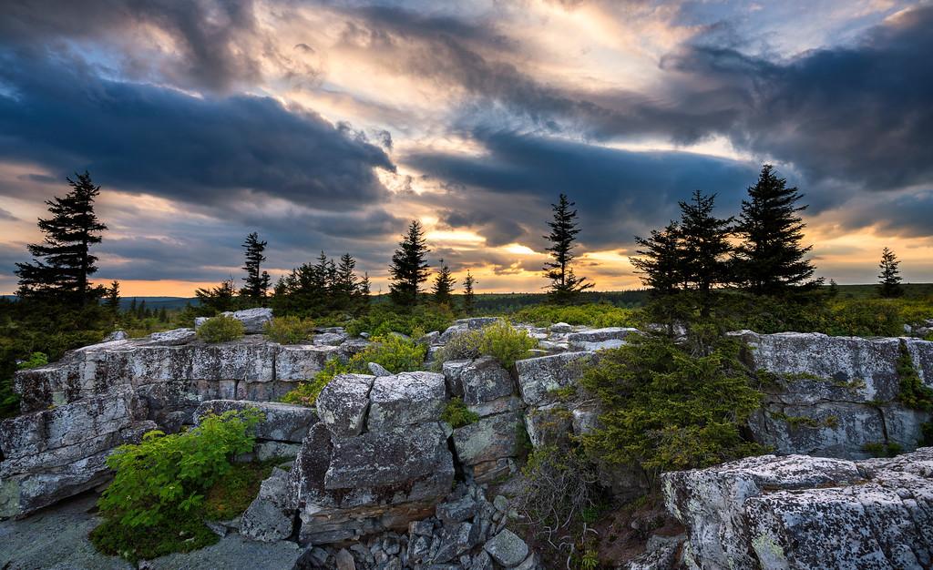 Spring at Bear Rocks
