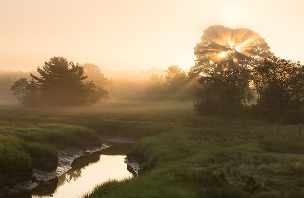Golden Maine Sunrise