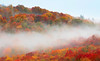Fall Color and Fog