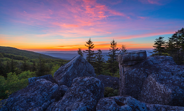 Dolly Sods: Off the Beaten Path