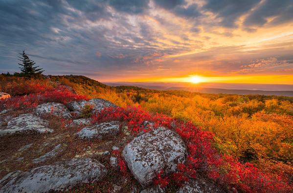 Fall Sunrise, Dolly Sods Wilderness Area