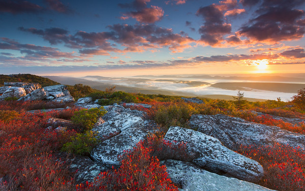 The Fall Colors of Dolly Sods Wilderness