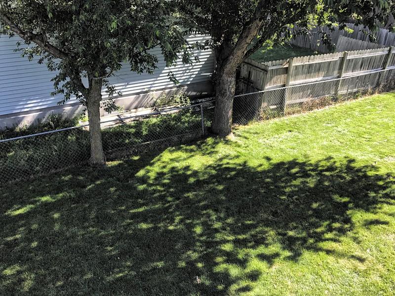 Backyard from Deck 002