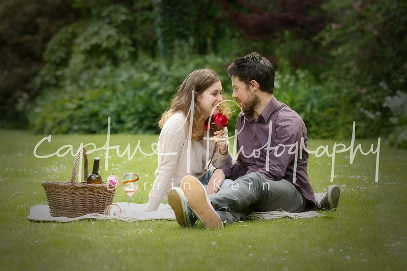 romantic picknick on the grass