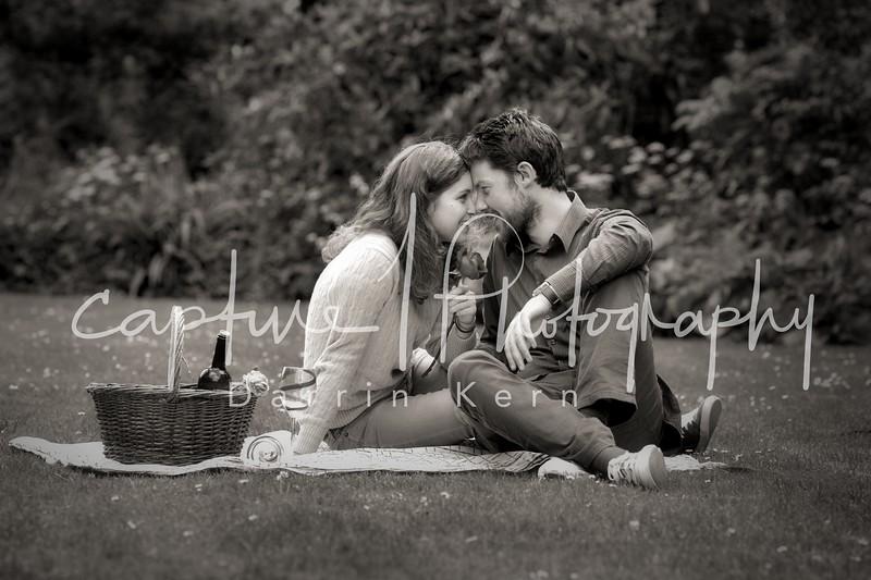 Picknick in ireland
