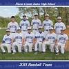 MCJHS Baseball Team 2015