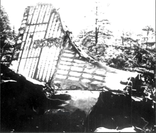 The right-hand side of the tail section exhibited severe fire damage.