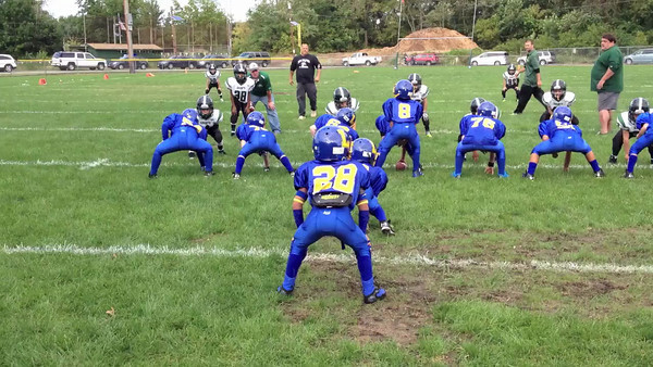 Mites at New Milford 9-14-13