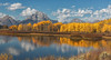 Oxbow Bend_N5A6010-Edit
