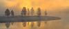 Sunrise Hayden Valley _N5A2035-Edit-2