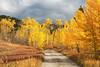 Fall Colors_N5A6192-Edit