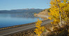 Hebgen Lake Fall Colors_N5A5174-2