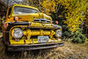 Yellow Truck_N5A5360-Edit
