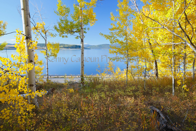 Hebgen Lake Fall Colors_N5A5169-2