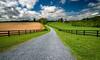 Spring Farmscape