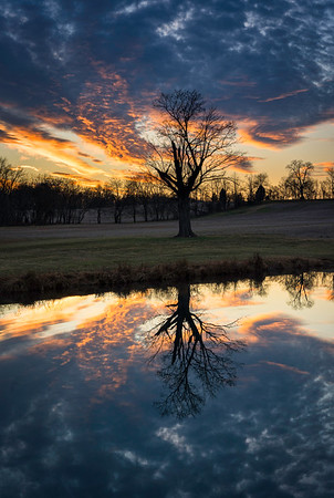 Late Afternoon, Reflected