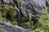 Snow melt running down a granite cliff, Mussel Creek, mid-coast British Columbia