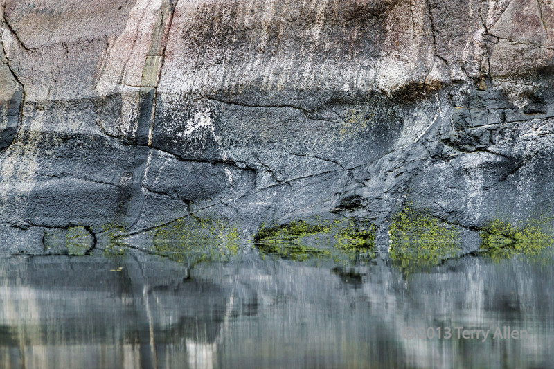 Moss and granite cliff reflections #7, Mussel Creek, mid-coast British Columbia