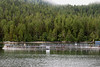 Salmon farm closed containment tanks with seagulls, Mussel Inlet, mid-coast BC