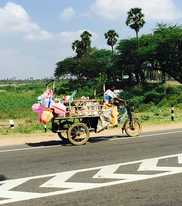 7. Mysore and Somnathpur