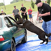 Staff photo by Kevin Harvison |<br /> Gibbs, the Kiowa K-9 Officer, leaps into the car after a suspect, played by Kiowa Police Officer Mike Sadler refuses to exit the car after commands from Kiowa K-9 handler and Assistant Chief Jess Wilson, right, during a Kiowa Police Department demonstration at the Kiowa Public School.