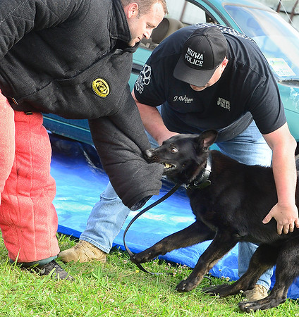 Staff photo by Kevin Harvison  <br /> Gibbs, the Kiowa K-9 Officer, attacks Kiowa officer Mike Sadler, left in the attack suit, has his arm secured while Kiowa K-9 handler and Assistant Chief Jess Wilson gives commands to Gibbs. The event was part of a Kiowa Police Department demonstation at the Kiowa Public School.