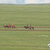 A Naadam horse race seen en route to Hustai Ger Camp.