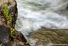 Rogue River Textures
