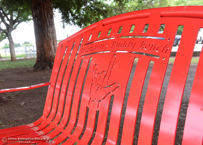 A bench in honor of Brandon, a first-grade student who died from cancer, Friday, April 22, 2016, at Durham School in Durham, California. (Dan Reidel -- Enterprise-Record)