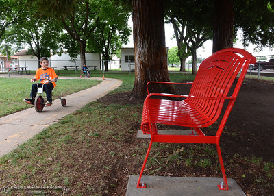 Brady Dunn rides a tricycle Friday, April 22, 2016, by the bench in honor of his friend and classmate of Brandon, a first-grade student who died from cancer, at Durham School in Durham, California. (Dan Reidel -- Enterprise-Record)