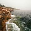 Foggy Acadia