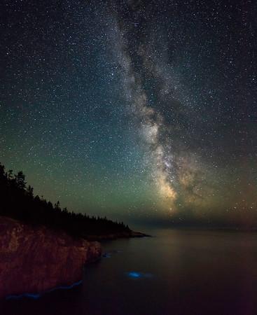 Stars and Bioluminescence