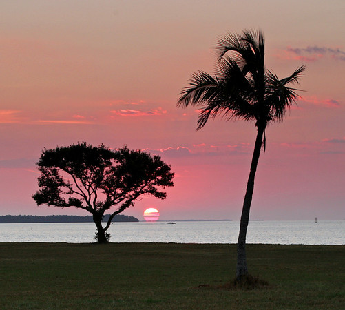 Sun Up Over Flamingo