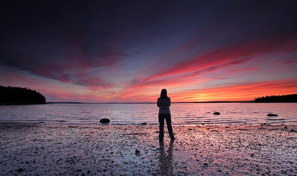 Contemplating Sunset