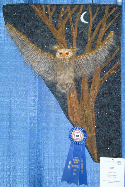 First Place<br /> Flying Owl <br /> Elaine Chapman