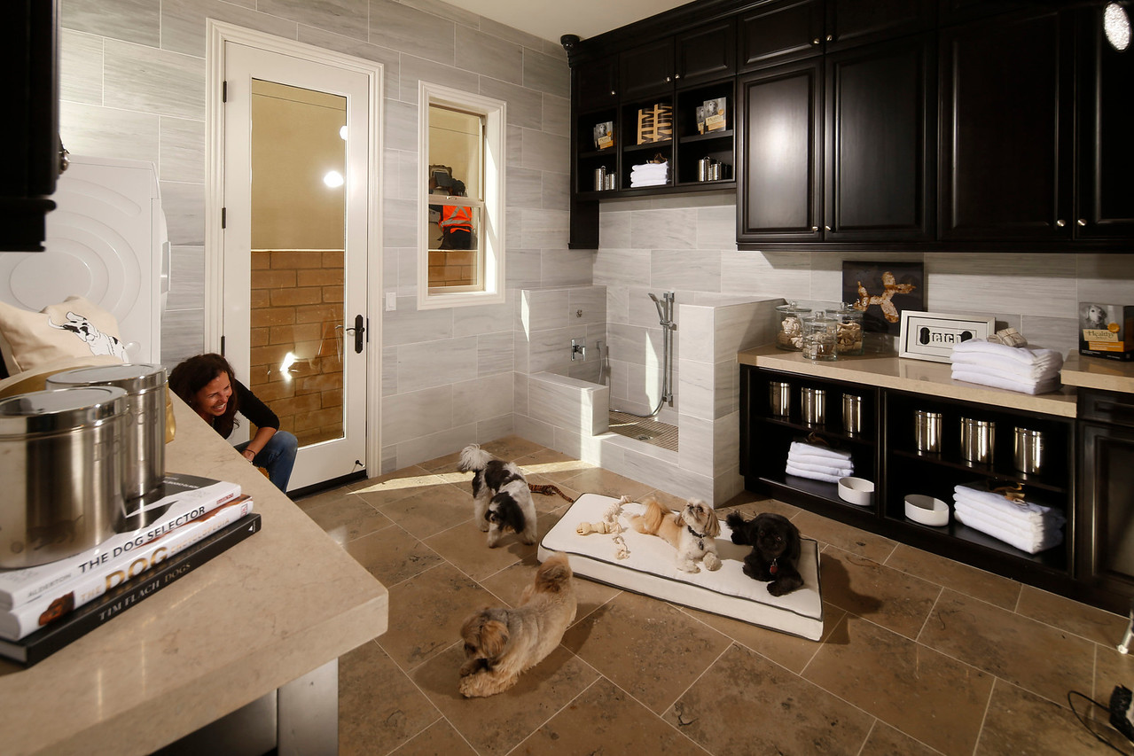 Avignon Pet Suite, Brea, CA, 5/10/14.